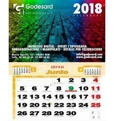 Calendario pared 43,5 cm. NOTAS 2019 (2,3 €+)