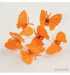 Ramito butterflies